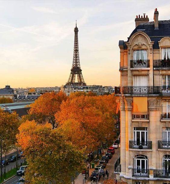 Nên hay không nên du học Pháp - xu hướng du học mới?